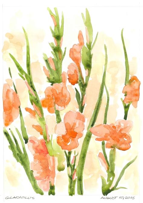 2015-08-10 Gladiolus