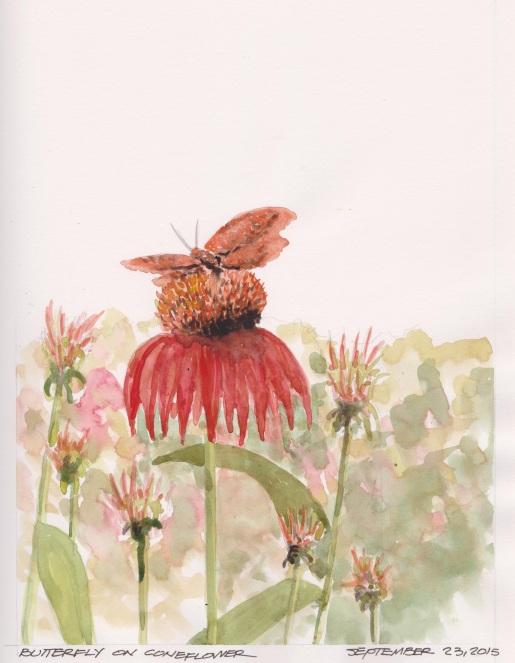 2015-09-23 Butterfly