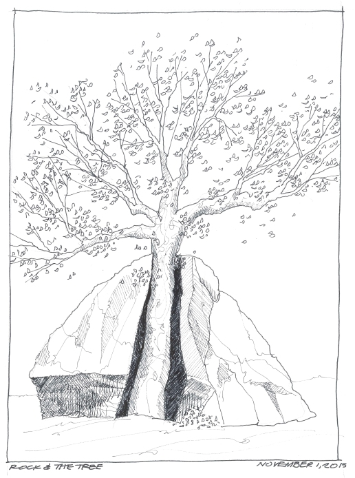 201511-01 Rock and Tree