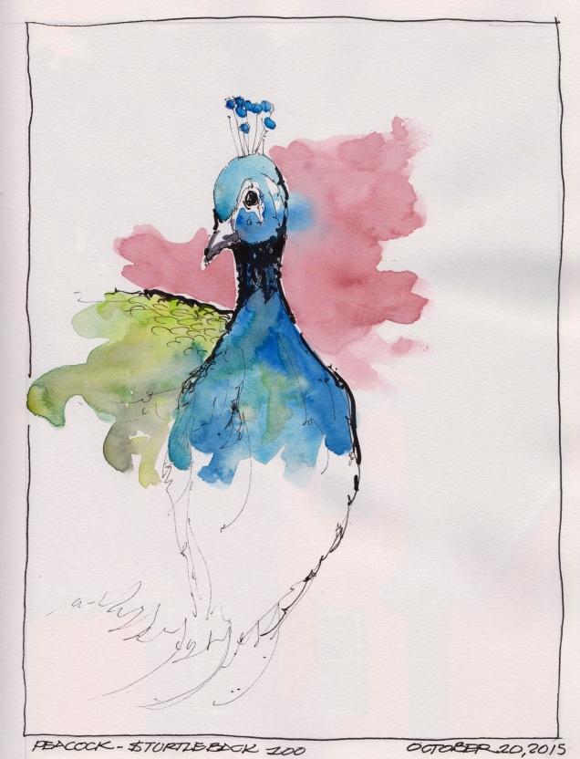 2015-10-20 Peacock
