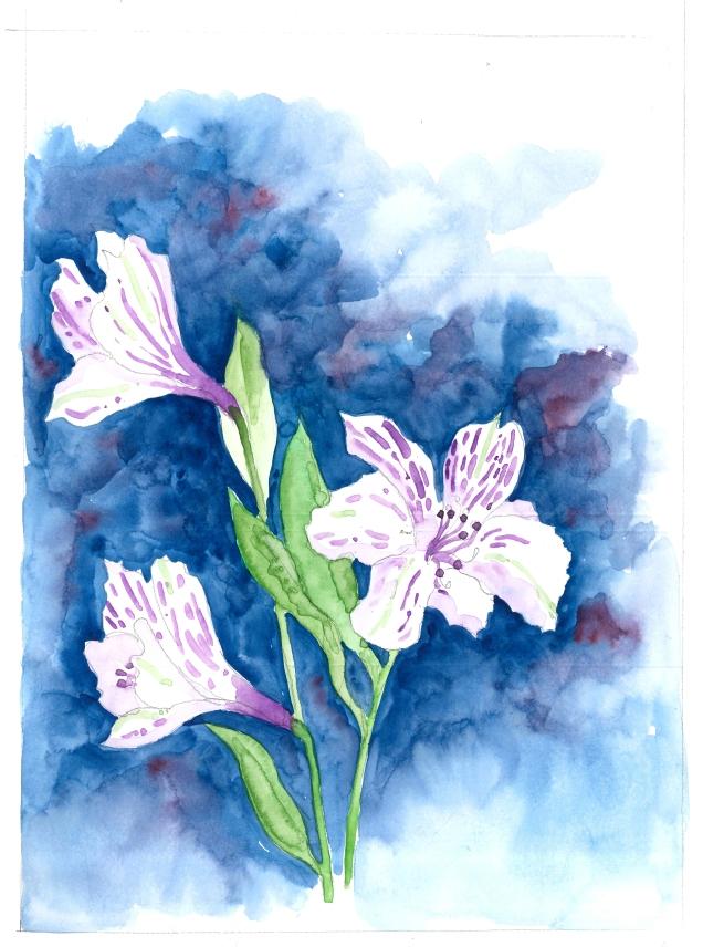 2016-01-04 White Flowers