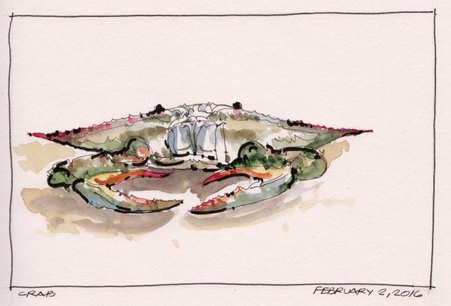 2016-02-02 Crab