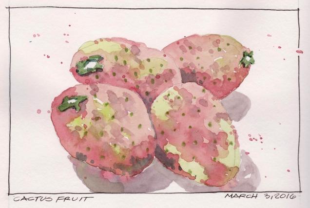 2016-03-03 Cactus Fruit