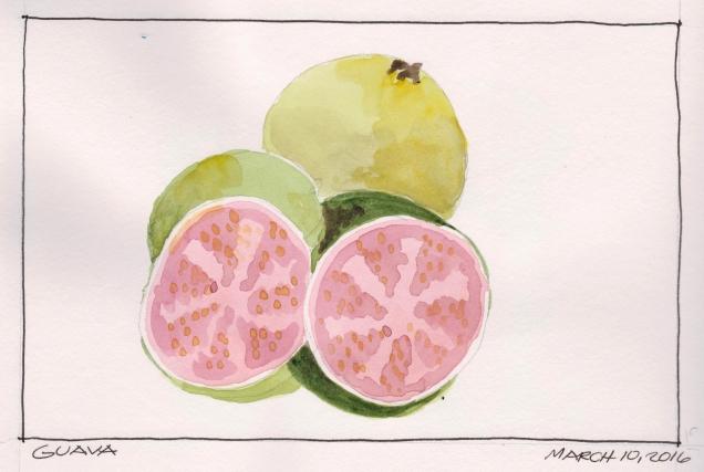 2016-03-10 Guava