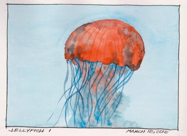 2016-03-18 Jellyfish I