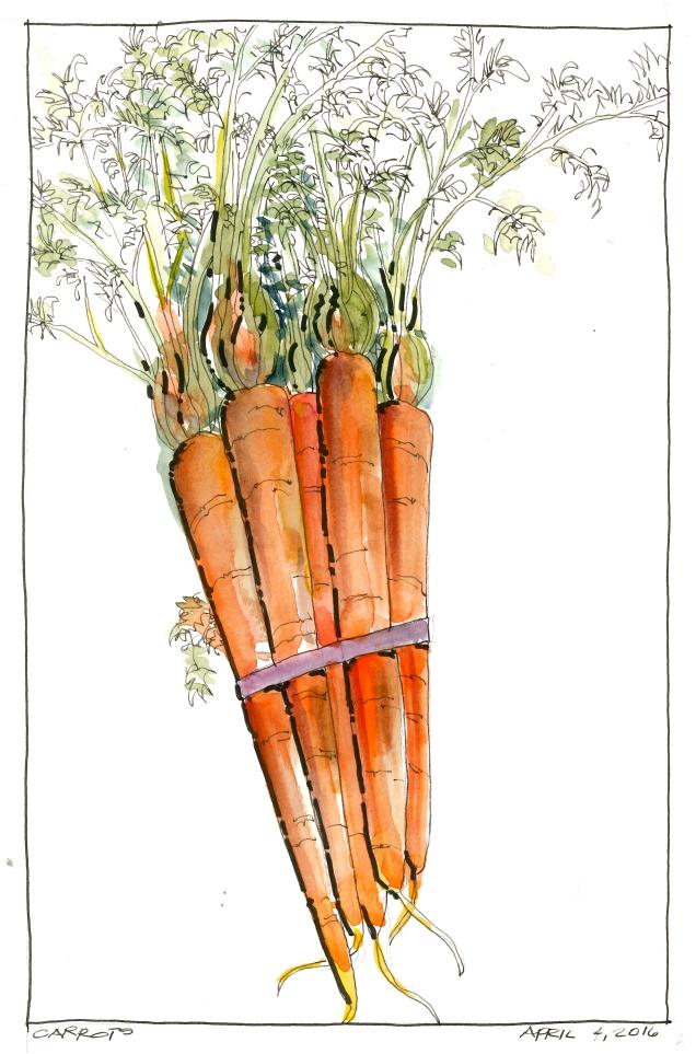 2016-04-04 Carrots