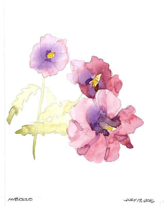 2016-07-19 Hibiscus