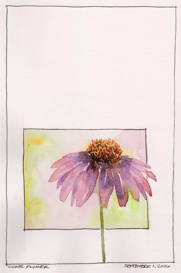 2016-09-01 Cone Flower